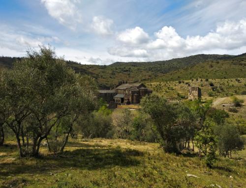 Les muntanyes de Sant Quirze de Colera